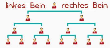 binaeres_system